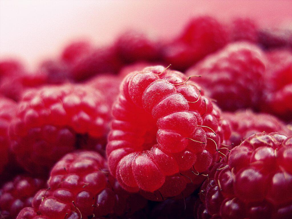 Raspberry Shrub | nbwi.ca